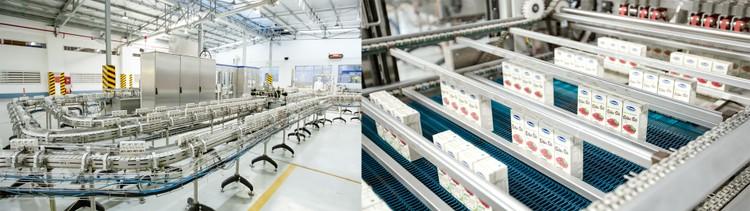 """3 lý do dòng sữa hạt cao cấp của Vinamilk được kỳ vọng """"làm nên chuyện"""" tại Hàn Quốc ảnh 1"""