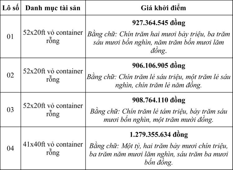 Ngày 30/6/2020, đấu giá lô vỏ container rỗng tại TPHCM ảnh 1