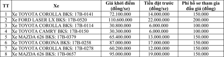 Ngày 16/7/2020, đấu giá 08 xe ôtô tại tỉnh Thái Bình  ảnh 1
