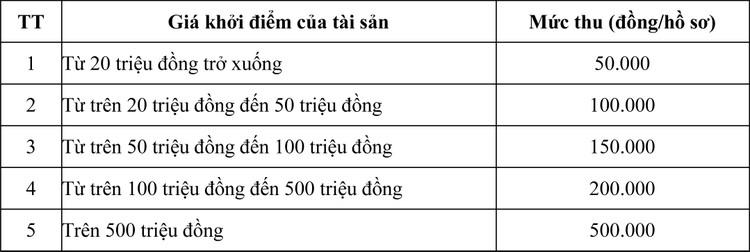 Ngày 7/8/2020, đấu giá quyền khai thác mỏ khoáng sản tại tỉnh Thừa Thiên Huế ảnh 8
