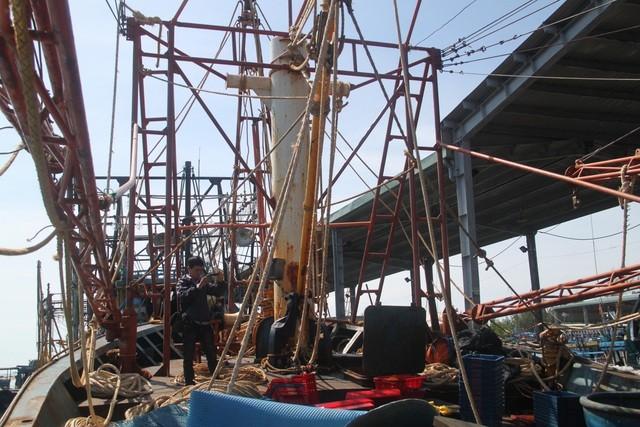 Bình Định: Chủ tàu vỏ thép bị ngân hàng kiện đòi khoản nợ 22,5 tỷ đồng ảnh 1