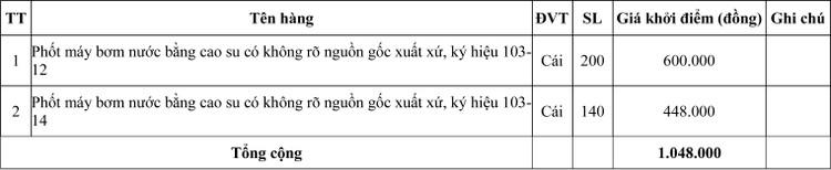 Ngày 20/7/2020, đấu giá hàng hóa tịch thu tại tỉnh Quảng Trị ảnh 2