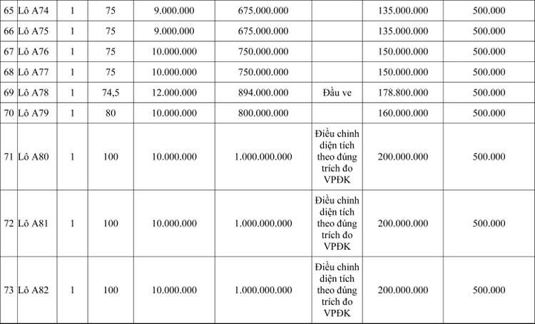 Ngày 30/7/2020, đấu giá quyền sử dụng đất tại thành phố Thanh Hóa, tỉnh Thanh Hóa ảnh 5