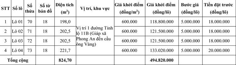 Ngày 8/8/2020, đấu giá quyền sử dụng đất tại huyện Phong Điền, tỉnh Thừa Thiên Huế ảnh 2