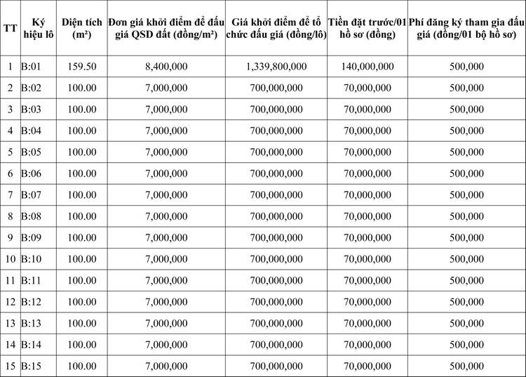 Ngày 3/8/2020, đấu giá quyền sử dụng đất tại huyện Đông Sơn, tỉnh Thanh Hóa ảnh 1