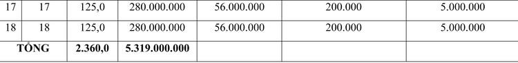 Ngày 6/8/2020, đấu giá quyền sử dụng đất tại huyện Tư Nghĩa, tỉnh Quảng Ngãi ảnh 2