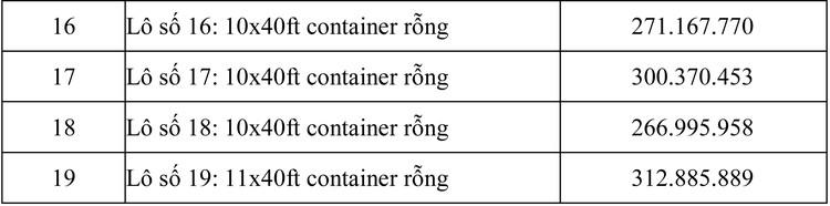 Ngày 29/7/2020, đấu giá lô container rỗng tại TPHCM ảnh 2
