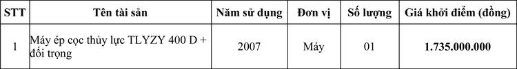 Ngày 13/8/2020, đấu giá máy ép cọc thủy lực tại TPHCM ảnh 1