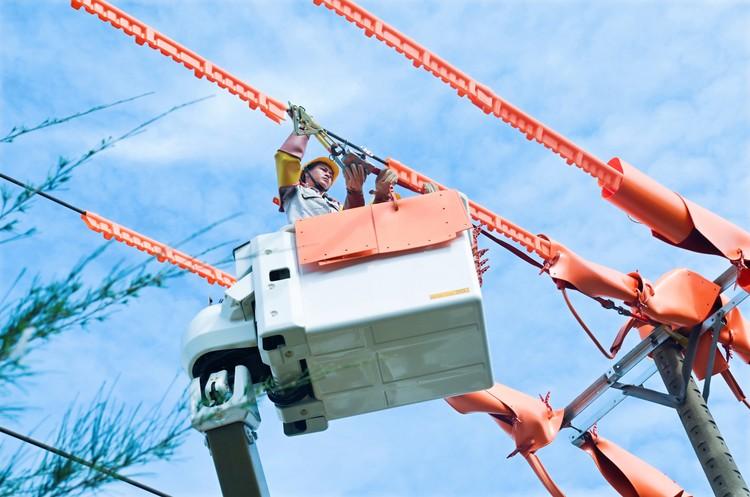EVNSPC đảm bảo cấp điện ổn định và an toàn trong dịp Lễ 2/9 ảnh 2