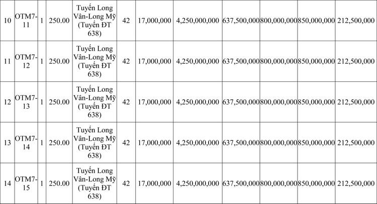 Ngày 8/10/2020, đấu giá quyền sử dụng đất tại thành phố Quy Nhơn, tỉnh Bình Định ảnh 3