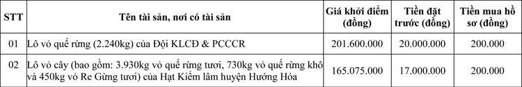 Ngày 24/9/2020, đấu giá lô vỏ quế rừng và lô vỏ cây tại tỉnh Quảng Trị ảnh 1