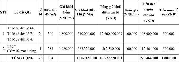Ngày 2/10/2020, đấu giá quyền sử dụng đất tại thị xã Phổ Yên, tỉnh Thái Nguyên ảnh 1