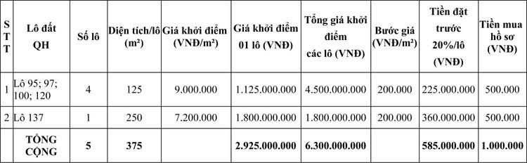 Ngày 2/10/2020, đấu giá quyền sử dụng đất tại thị xã Phổ Yên, tỉnh Thái Nguyên ảnh 2