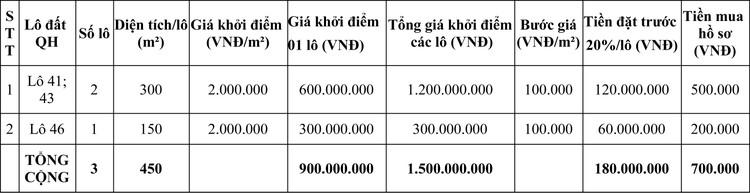 Ngày 2/10/2020, đấu giá quyền sử dụng đất tại thị xã Phổ Yên, tỉnh Thái Nguyên ảnh 3