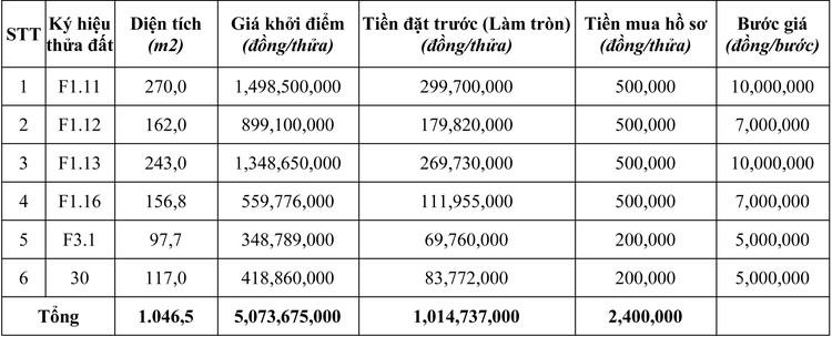 Ngày 5/10/2020, đấu giá quyền sử dụng đất tại huyện Krông Nô, tỉnh Đăk Nông ảnh 1
