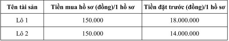 Ngày 30/9/2020, đấu giá tang vật vi phạm hành chính bị tịch thu tại tỉnh Khánh Hòa ảnh 3