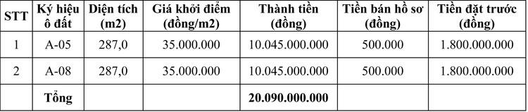 Ngày 13/10/2020, đấu giá quyền sử dụng đất tại thành phố Việt Trì, tỉnh Phú Thọ ảnh 1