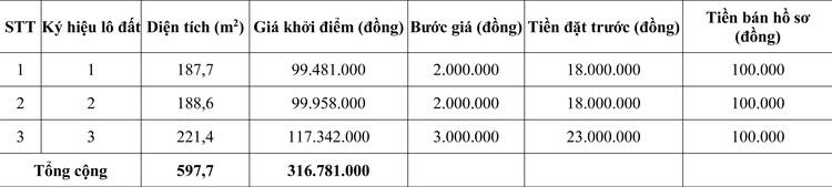 Ngày 19/10/2020, đấu giá quyền sử dụng đất tại huyện Krông Nô, tỉnh Đắk Nông ảnh 1