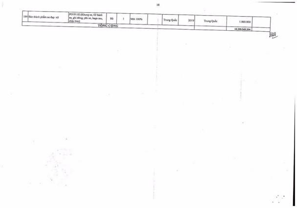 Ngày 12/10/2020, đấu giá tang vật vi phạm hành chính bị tịch thu tại tỉnh Bình Dương ảnh 18