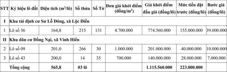 Ngày 29/10/2020, đấu giá quyền sử dụng đất tại huyện Phú Lộc, tỉnh Thừa Thiên Huế ảnh 1
