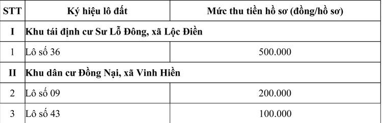 Ngày 29/10/2020, đấu giá quyền sử dụng đất tại huyện Phú Lộc, tỉnh Thừa Thiên Huế ảnh 2