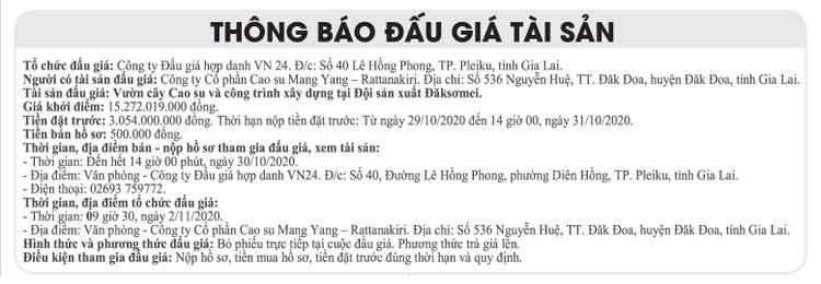 Ngày 2/11/2020, đấu giá vườn cây cao su và công trình xây dựng tại tỉnh Gia Lai ảnh 1