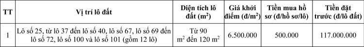 Ngày 7/11/2020, đấu giá quyền sử dụng đất tại huyện Nam Sách, tỉnh Hải Dương ảnh 1