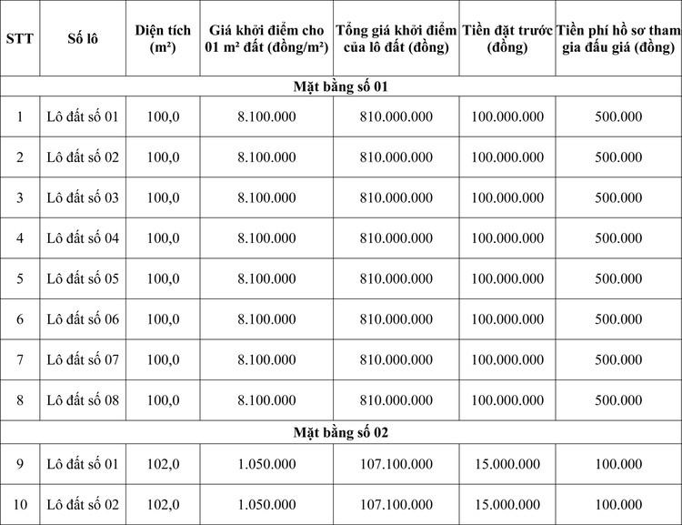 Ngày 5/11/2020, đấu giá quyền sử dụng đất tại huyện Bá Thước, tỉnh Thanh Hóa ảnh 1
