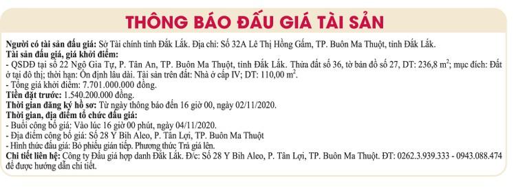 Ngày 4/11/2020, đấu giá quyền sử dụng đất tại TP. Buôn Ma Thuột, tỉnh Đắk Lắk ảnh 1