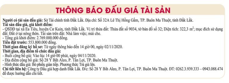 Ngày 4/11/2020, đấu giá quyền sử dụng đất tại huyện Cư Kuin, tỉnh Đắk Lắk ảnh 1
