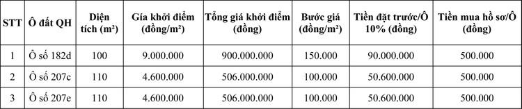 Ngày 6/11/2020, đấu giá quyền sử dụng đất tại thành phố Sông Công, tỉnh Thái Nguyên ảnh 1