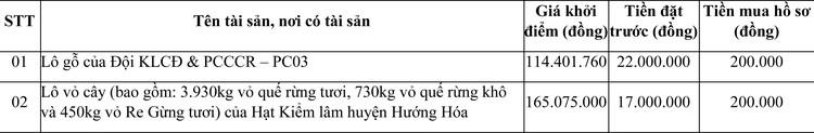 Ngày 29/10/2020, đấu giá lô gỗ và lô vở cây tại tỉnh Quảng Trị ảnh 1