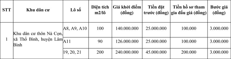 Ngày 9/11/2020, đấu giá quyền sử dụng đất tại huyện Lâm Bình, tỉnh Tuyên Quang ảnh 1