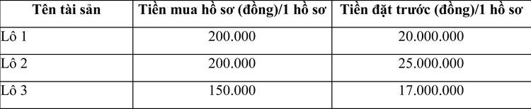 Ngày 30/10/2020, đấu giá tang vật vi phạm hành chính bị tịch thu tại tỉnh Khánh Hòa ảnh 4