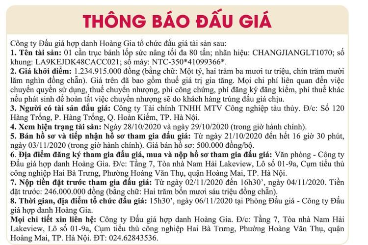 Ngày 6/11/2020, đấu giá 1 cần trục bánh lốp tại Hà Nội ảnh 1