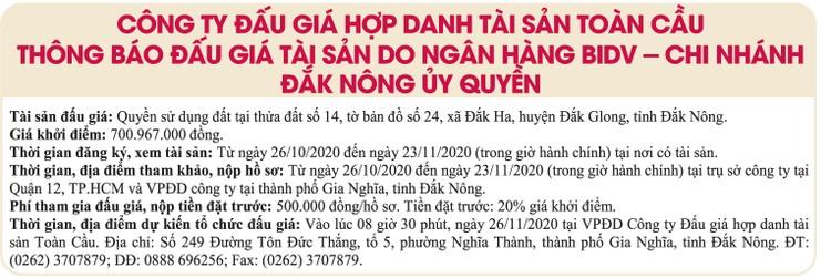 Ngày 26/11/2020, đấu giá quyền sử dụng đất tại huyện Đắk Glong, tỉnh Đắk Nông ảnh 1