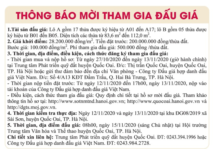Ngày 15/11/2020, đấu giá quyền sử dụng đất tại huyện Quốc Oai, Hà Nội ảnh 1