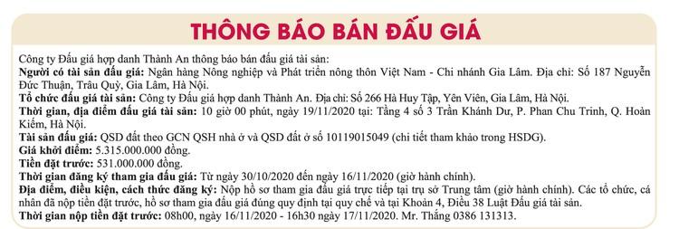 Ngày 19/11/2020, đấu giá quyền sử dụng đất tại Hà Nội ảnh 1