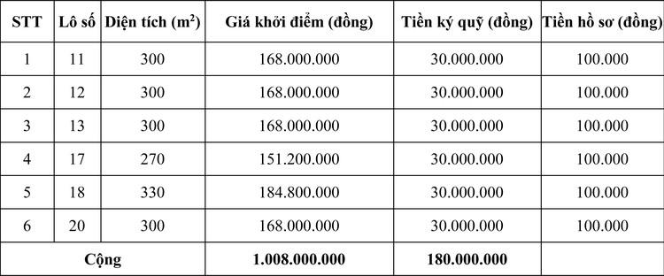 Ngày 17/11/2020, đấu giá quyền sử dụng đất tại huyện Cam Lộ, tỉnh Quảng Trị ảnh 2