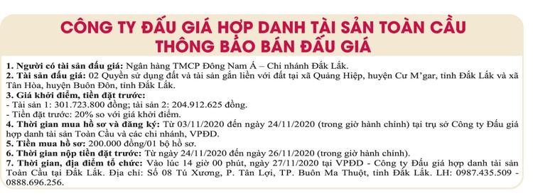 Ngày 27/11/2020, đấu giá quyền sử dụng đất tại huyện Cư M' Gar, tỉnh Đắk Lắk ảnh 1
