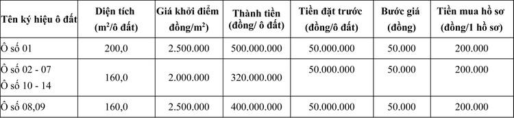 Ngày 21/11/2020, đấu giá quyền sử dụng đất tại huyện Lâm Thao, tỉnh Phú Thọ ảnh 1
