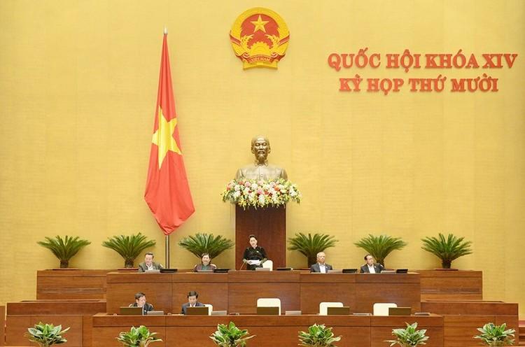 Phó Thủ tướng và các Bộ trưởng trả lời chất vấn ảnh 10