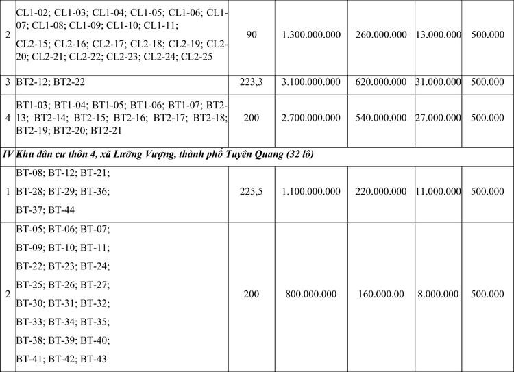 Ngày 29/11/2020, đấu giá quyền sử dụng đất tại thành phố Tuyên Quang, tỉnh Tuyên Quang ảnh 2