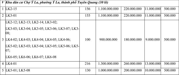 Ngày 29/11/2020, đấu giá quyền sử dụng đất tại thành phố Tuyên Quang, tỉnh Tuyên Quang ảnh 3