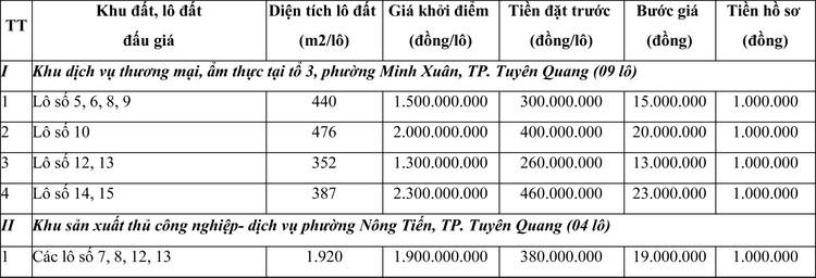 Ngày 29/11/2020, đấu giá quyền sử dụng đất tại thành phố Tuyên Quang, tỉnh Tuyên Quang ảnh 4