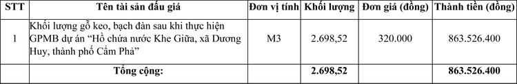 Ngày 30/11/2020, đấu giá lô vật liệu thu hồi tại tỉnh Quảng Ninh ảnh 1