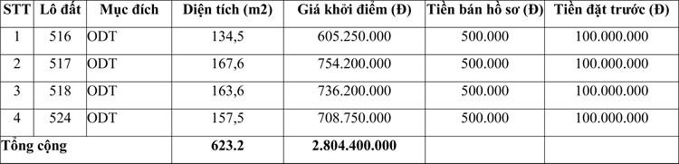 Ngày 10/12/2020, đấu giá quyền sử dụng đất tại huyện Bạch Thông, tỉnh Bắc Kạn ảnh 2