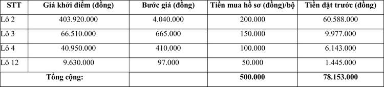 Ngày 4/12/2020, đấu giá Máy móc thiết bị tại tỉnh Ninh Thuận ảnh 2
