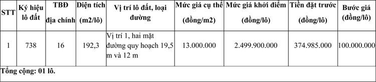 Ngày 14/12/2020, đấu giá quyền sử dụng đất tại thành phố Huế, tỉnh Thừa Thiên Huế ảnh 1