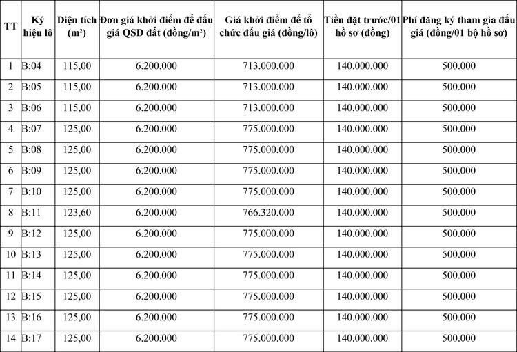 Ngày 14/12/2020, đấu giá quyền sử dụng đất tại huyện Đông Sơn, tỉnh Thanh Hóa ảnh 1
